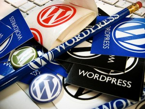 wordpress_schwag